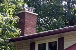 Chimney Restoration chimney monkey