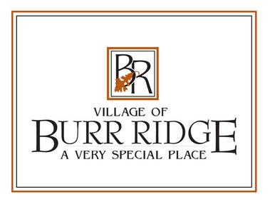 Chimney Sweep & Repair Company near Burr Ridge
